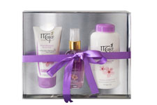 MAJA SET PLUM TALC+SPL+CREAM